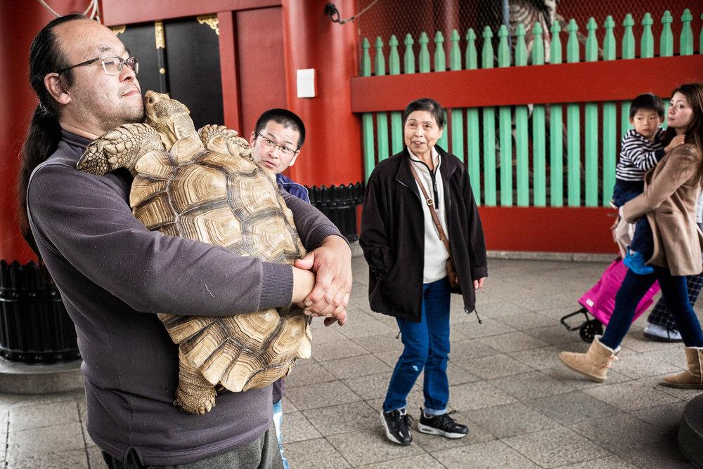 tortoise-man-2000